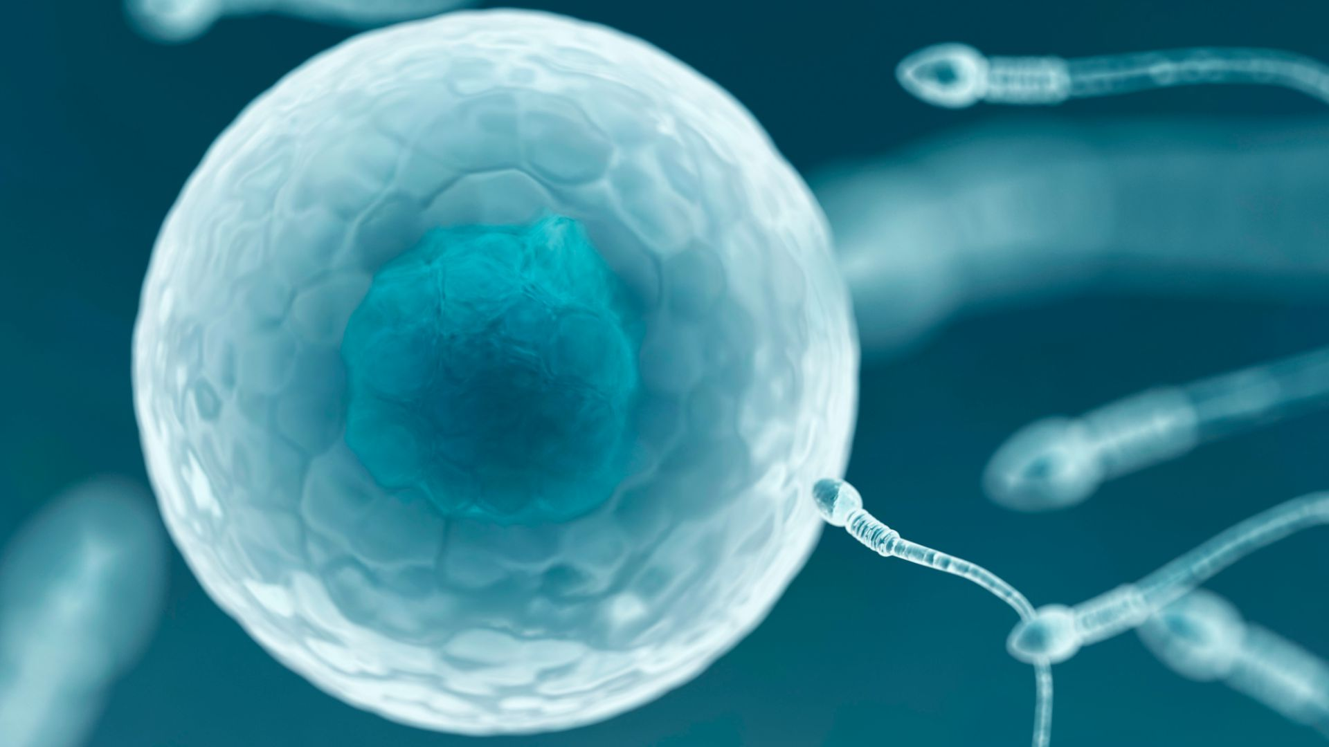 uk national sperm bank only has nine registered donors