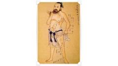 El hígado en la medicina oriental china