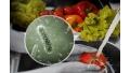 Identificación de virus entéricos en los alimentos de la Ciudad de México