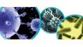 Infecciones bacterianas en pacientes con cirrosis hepática